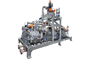 Dry Vacuum Pumps Engineered-to-Order Systems - Nash